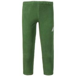 Didriksons: Флисовые брюки Monte