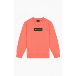 Champion: Crewneck Sweatshirt